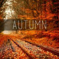 پلی لیست   پاییزی